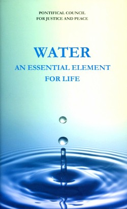 """Water an essential element for life"" (Vatican City 2013) pp. 117"